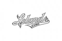 Ledands