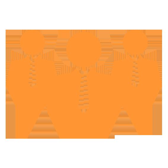 professional-services-icon